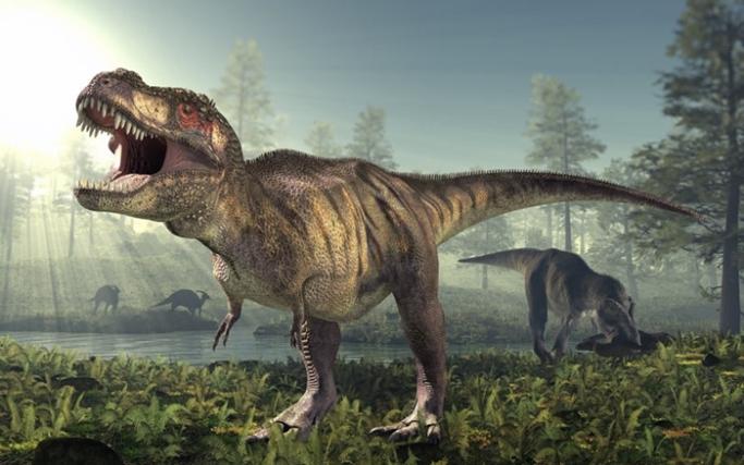ไทแรนโนซอรัส | Dinosaur